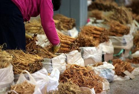 Korea private tour-Tagytravelkorea, Geumsan ginseng market