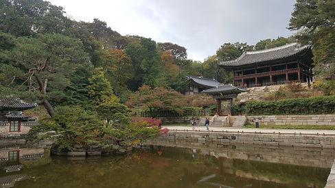 Korea private tour-Tagytravelkorea, Changdeokgung Palace