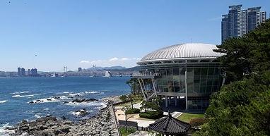 Korea private tour-Tagytravelkorea, Dongbaek Island