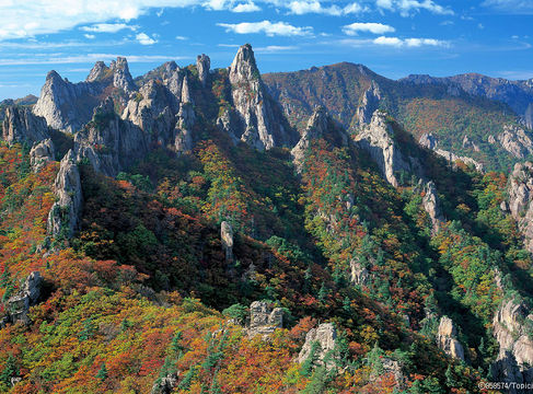Mt Seorak - Dinosaur Ridge-South Korea Hiking