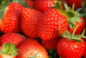 Korea private tour-Tagytravelkorea, Strawberry picking at the farm