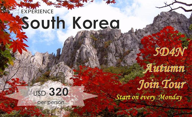 South Kore 5D4N Autumn Join tour -Tagy Travel Korea