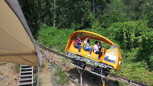 Korea private tour-Tagytravelkorea, Extreme Adventure in Cheongpung Tour : Cheongpung Lake Monorail Tour