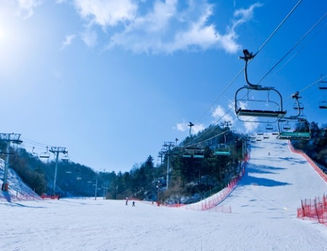 Nami Island & Elysian Ski Resort - South Korea winter trip