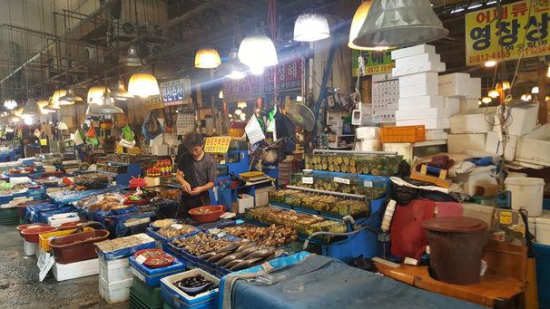 Korea private tour-Tagytravelkorea, Norangjin fish market