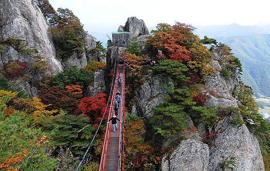 Fall Foliage Trip from Seoul-Mt.Daedunsan Provincial Park