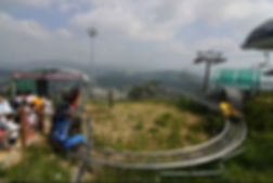Korea private tour-Tagytravelkorea, Alpine coaster