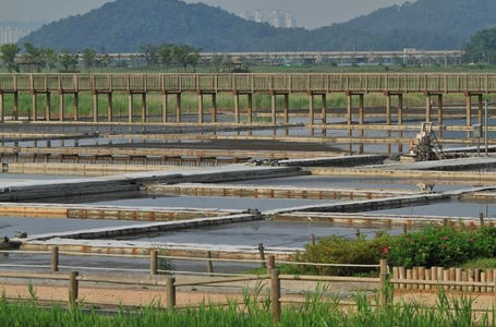 Korea private tour-Tagytravelkorea, Sorae Ecological Park-salt farm