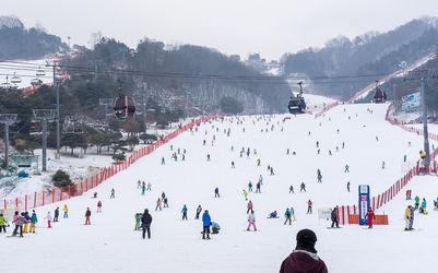 Jisan Forest Resort-Seoul Korea Winter trip