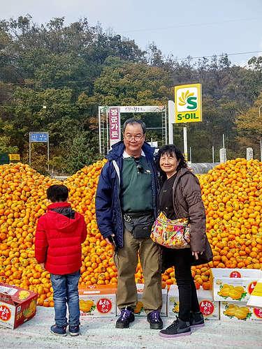Tagy Travel Korea - Korean Farming Experience Tours