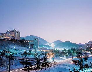 Daily Ski Tour- South Korea winter tour