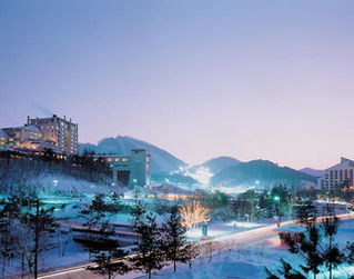 Daily Ski Tour- South Korea winter tour