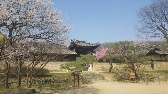 Korean folk village-1day family tour