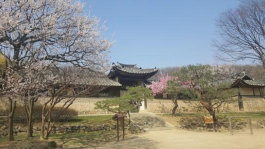 Korean folk village-1day family tour