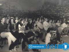 Festival 1981
