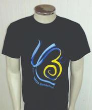 Camisa de 2013