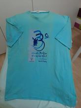 Camisa azul de 2003