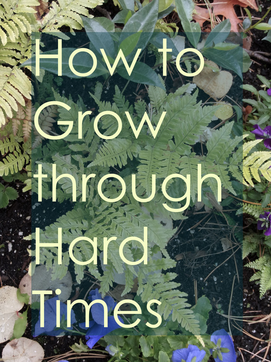 How to Grow through Hard Times