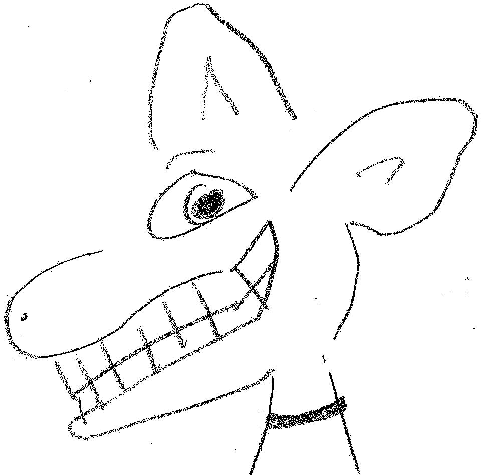 flapdog2