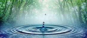 goutte formant des ronds dans l'eau sous fond de forêt