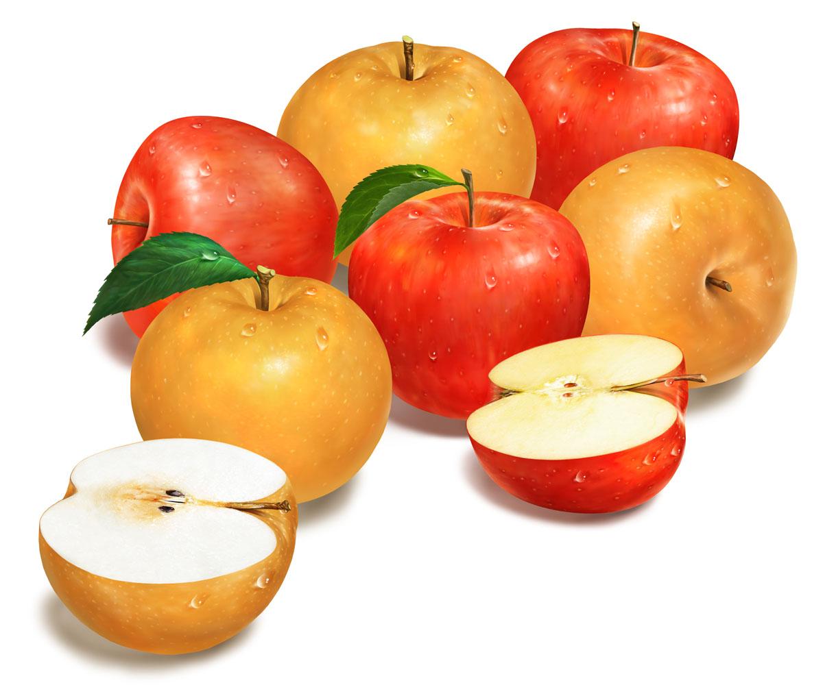 CJ제일제당 사과 배 시리즈