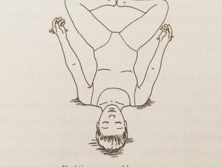 女性限定クラス Moon Cycle Yoga in Ayus