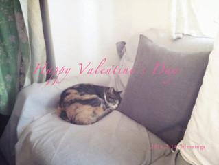 Happy Valentine's day ♡