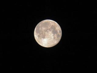 天秤座の満月の夜にLIVE配信レポート