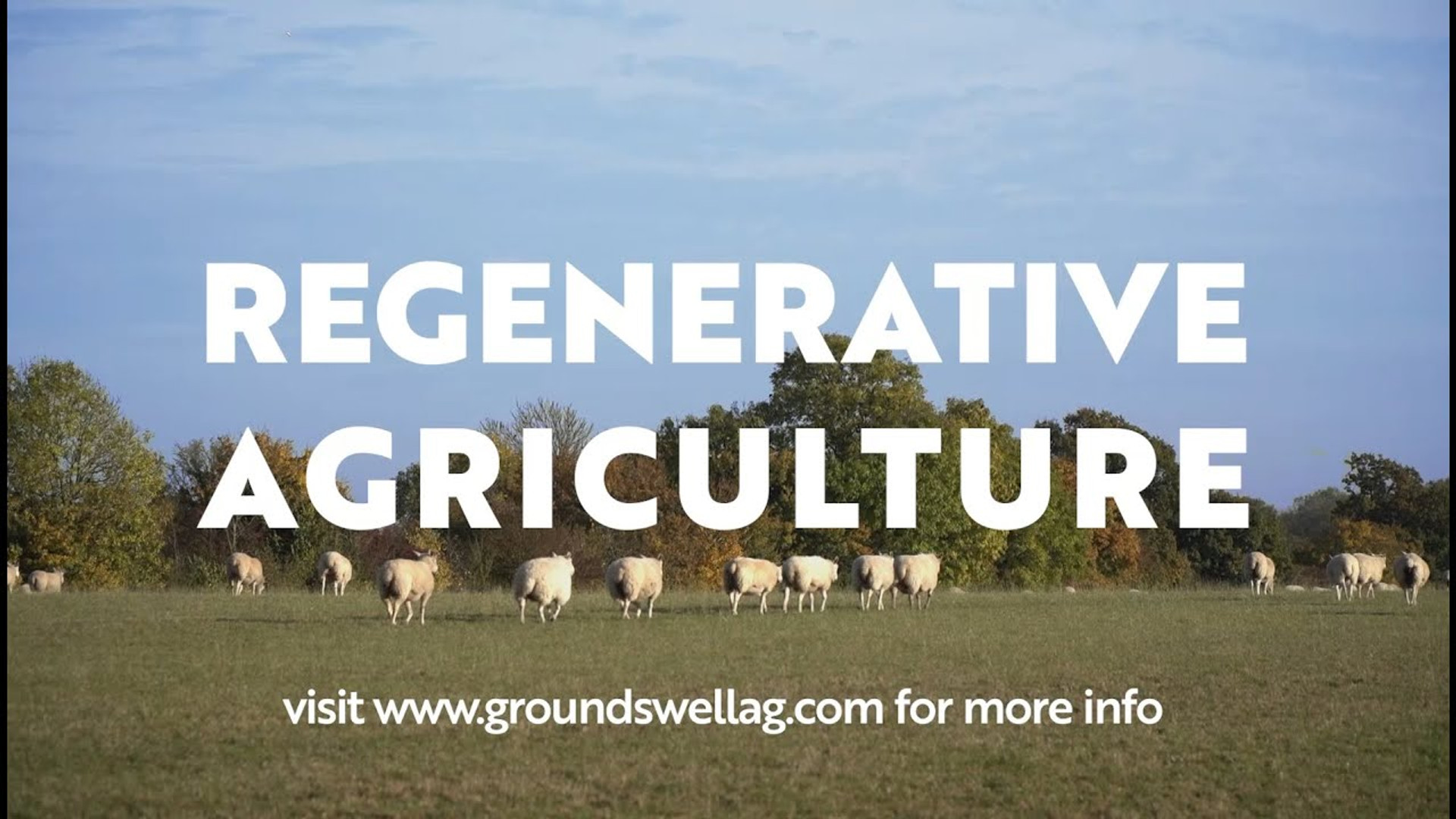 Regenerative agriculture uk