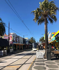 melbourne-st-kilda-tram-palm-tree.jpg