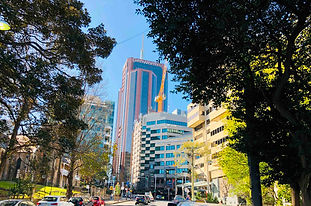 sydney-office-buildings-trees.jpg