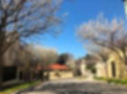 melbourne-toorak-houses-trees.jpg