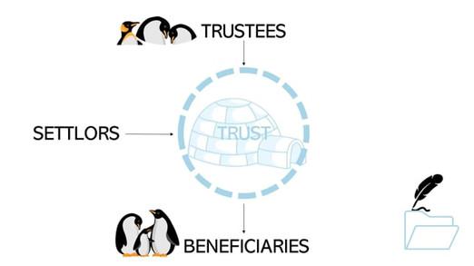 Trusts 101