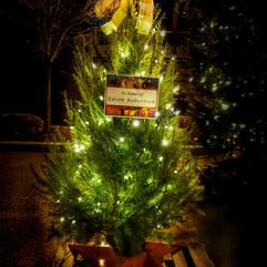 Tree of Hope (20).jpg