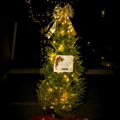Tree of Hope (38).jpg
