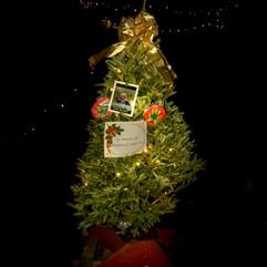 Tree of Hope (35).jpg
