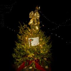 Tree of Hope (47).jpg