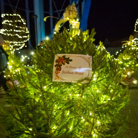 Tree of Hope (20).jpg