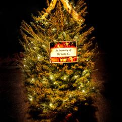 Tree of Hope (12).jpg