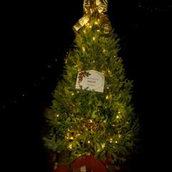 Tree of Hope (50).jpg