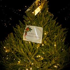 Tree of Hope (44).jpg
