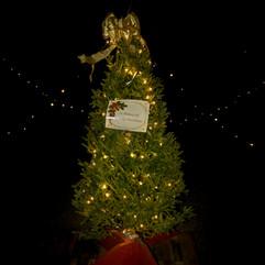Tree of Hope (37).jpg