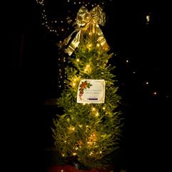 Tree of Hope (39).jpg