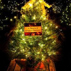 Tree of Hope (14).jpg