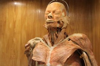 Технологии мумификации от древности до наших дней