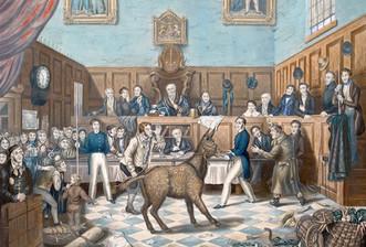 Самые невероятные казни животных