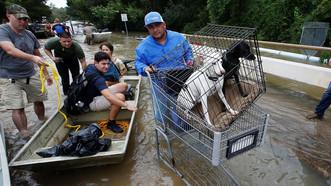 Гнев природы. Самые страшные ураганы в истории