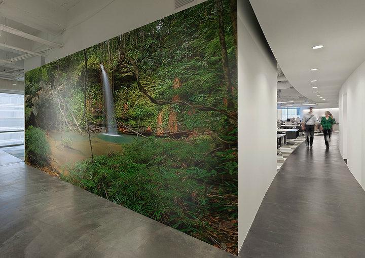 Wall_installation_office.jpg