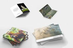 Books, brochure, notecards