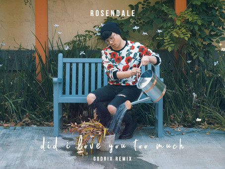 Rosendale - Did I Love You Too Much (Godrix Remix)